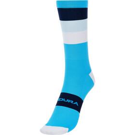 Endura Bandwidth Stripe Socken Herren türkis